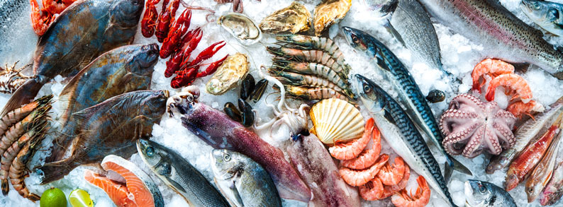 Attention seafood exporters! Chinese seafood imports rose in