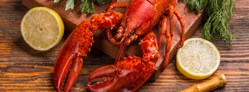 Is lobster China's latest seafood craze?