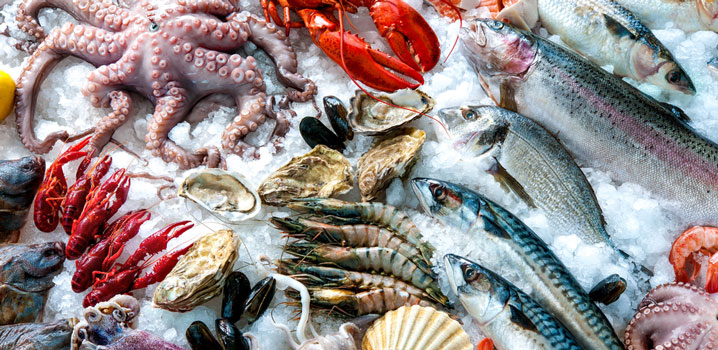 China, seafood, and cold chain: the perfect match? | ITE ... - photo#31